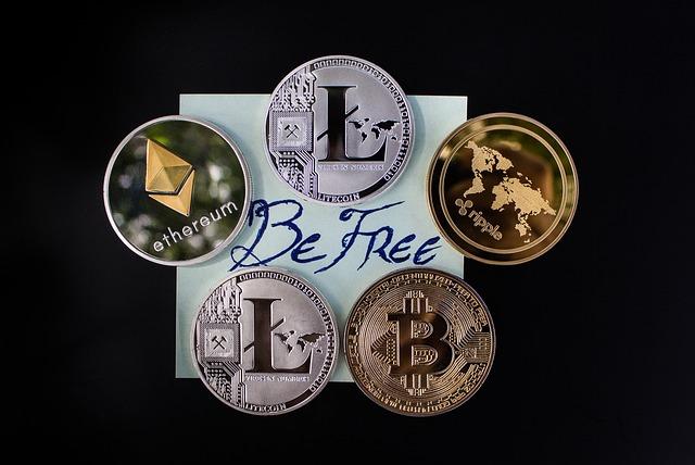 svobodné podnikání