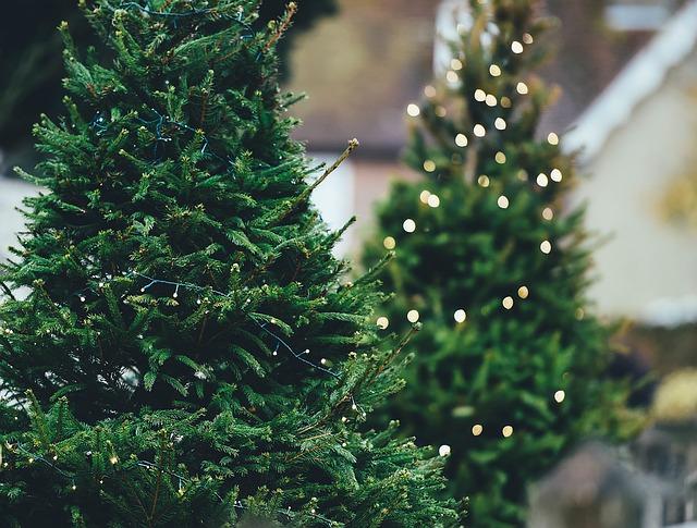žárovičky na stromky