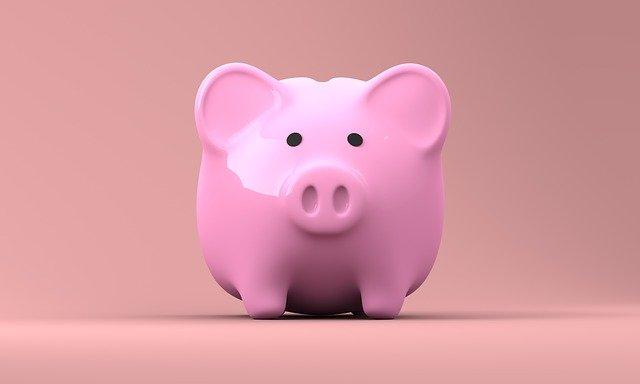prasátko na peníze